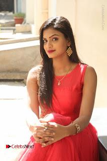 Telugu Actress Anusha Stills at Dhyavudaa Movie Teaser Launch  0037.JPG