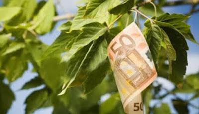 Θα μείνετε…ΑΦΩΝΟΙ – ΑΥΤΗ είναι η καλλιέργεια που προσφέρει έως 12.000 ευρώ το στρέμμα…