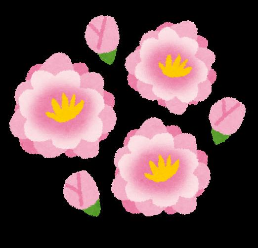 桃の花のイラスト かわいいフリー素材集 いらすとや