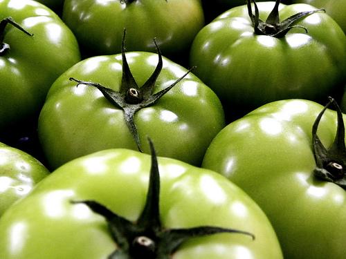 LCHF-bloggen: Stekte grønne tomater
