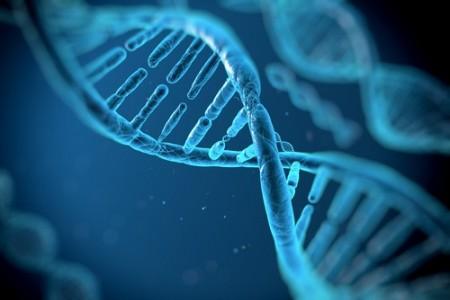 Conceitos para o estudo da Genética