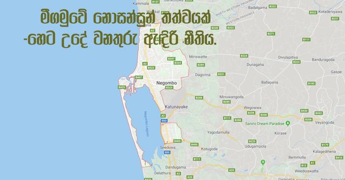 https://www.gossiplankanews.com/2019/05/negombo-curfew.html