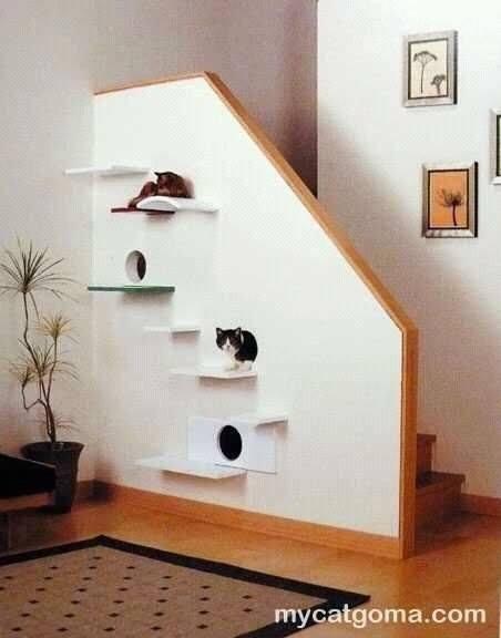 92 Desain Kandang Kucing Tingkat dari Kayu Besi dan