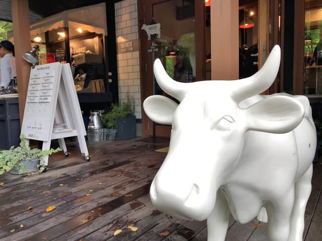 軽井沢ハルニレテラスで絶対食べたい人気No1ジェラートアイスは?永井農場直営「PURE MILK GELATO NAGAI FARM」はお土産にも最適