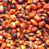 ¿ Por qué es malo el aceite de palma?