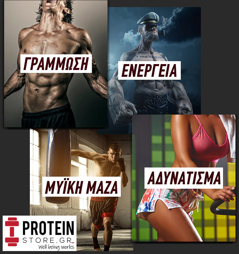 protein store gr