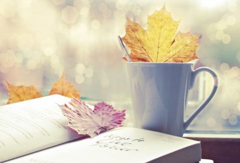 Τα βιβλία που πρέπει να διαβάσουμε οπωσδήποτε φέτος το φθινόπωρο