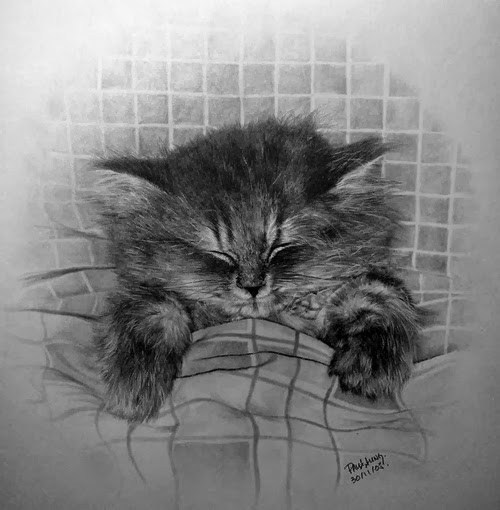 25-Hyper-realistic-Cats-Pencil-Drawings-Hong-Kong-Artist-Paul-Lung-aka-paullung-www-designstack-co