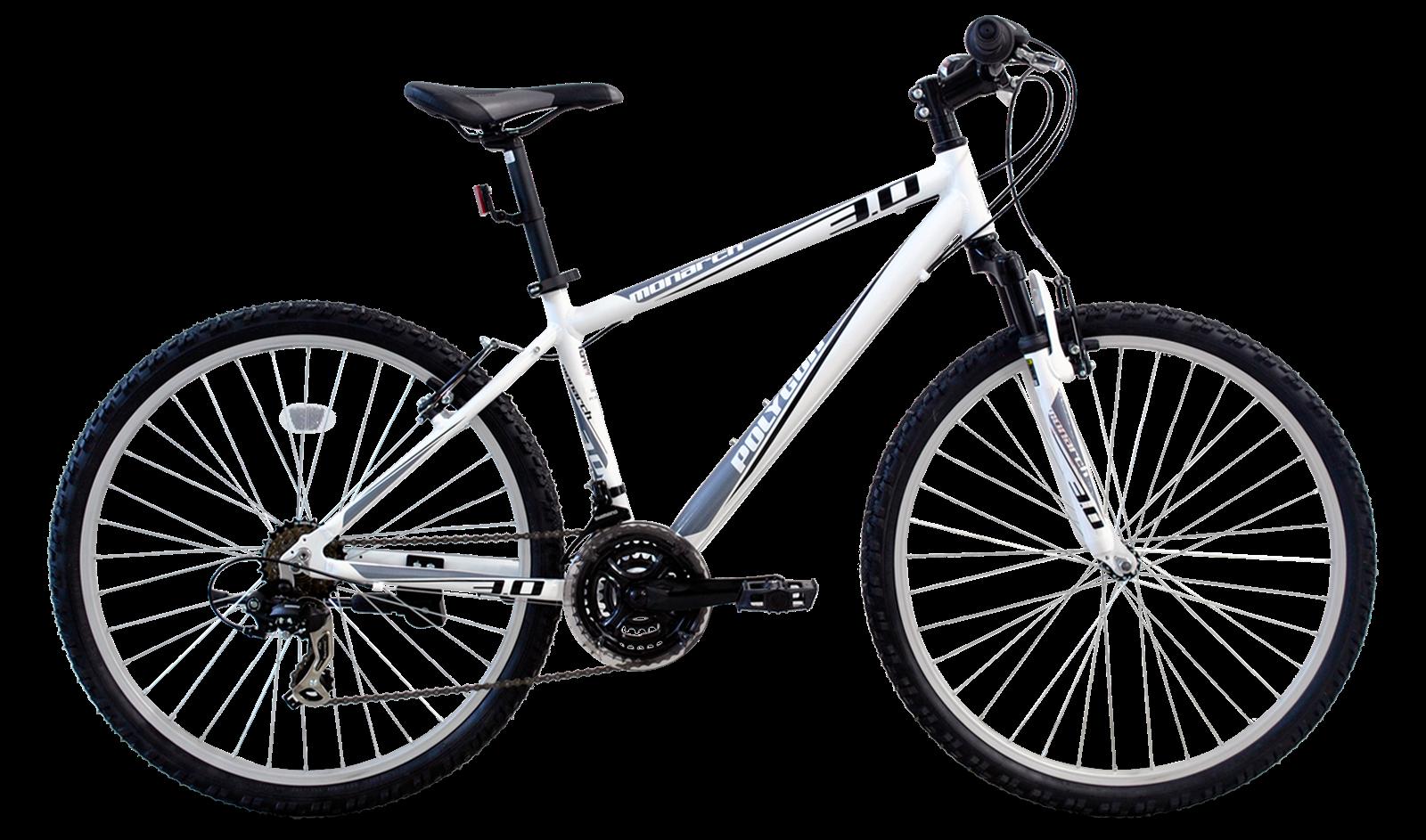 Fia Bike Sepeda Gunung Polygon Monarch 3 0 Gent Series