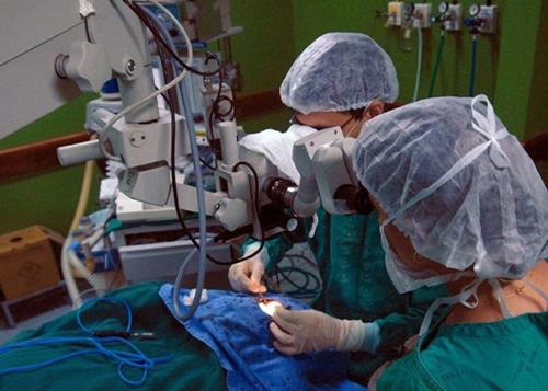 Primeiro transplante do Brasil completa 50 anos