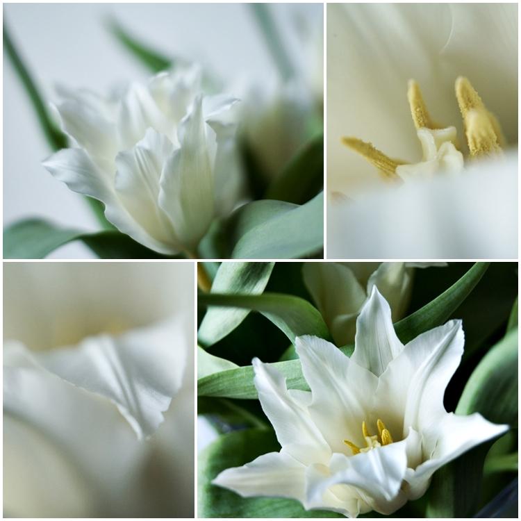 Collage einer weißen Tulpe mit spitzen Blättern { by it's me! }