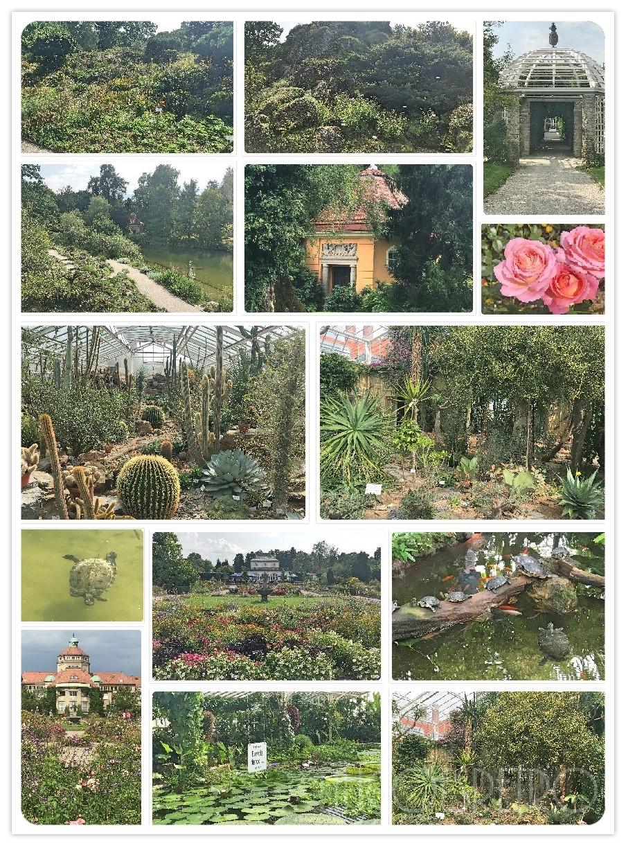 Lili Goes Retro Museen In München Der Botanische Garten München