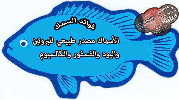 فوائد الاسماك لللأنسان