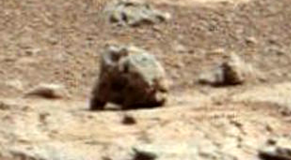 UFO SIGHTINGS DAILY: Groundhog Found On Mars In NASA Rover ...