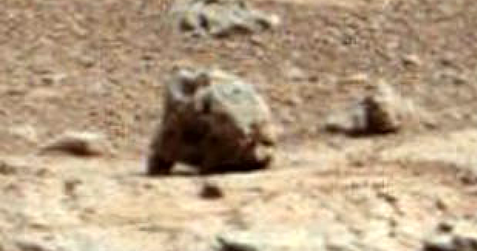 mars rover finds animal - photo #21
