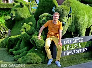 wystawa kwiatów Chelsea Flower Show