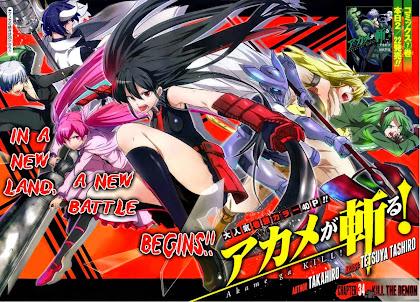 Todos os Episódios de Akame Ga Kill! Online