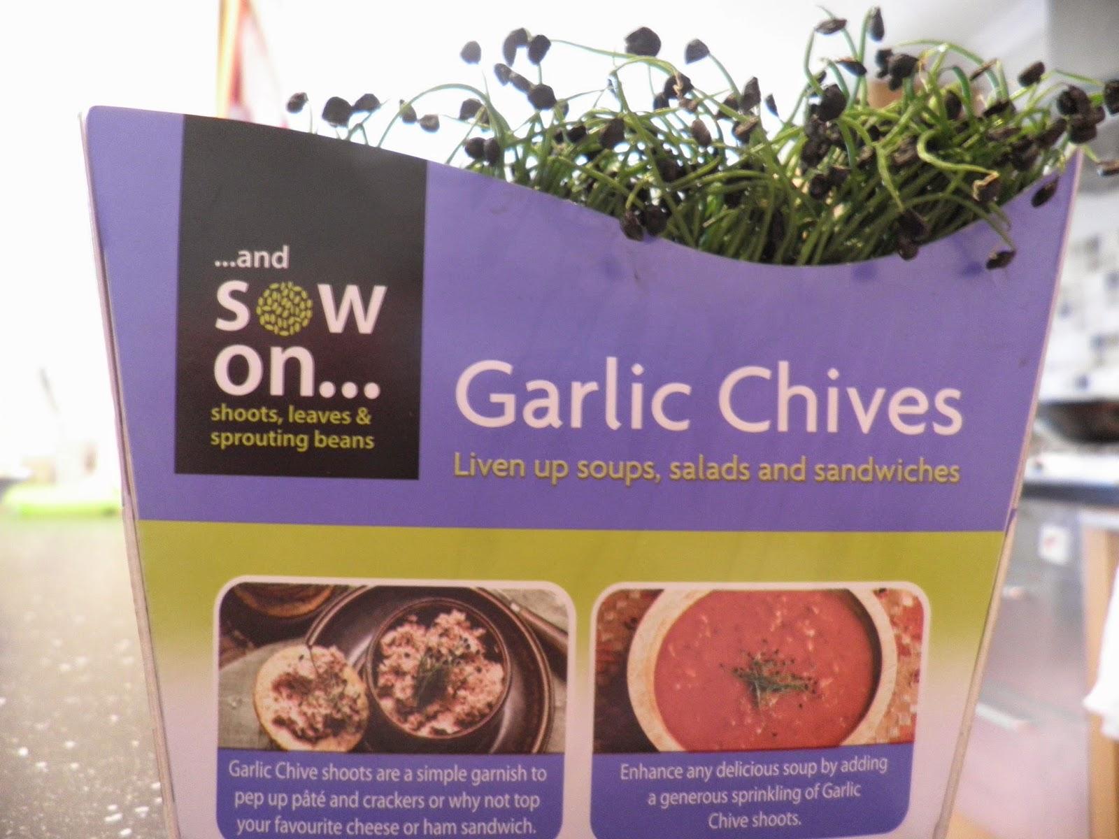 英国便宜韭菜苗