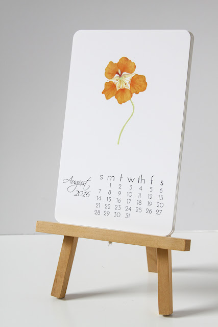 watercolor calendar, garden year, art prints, watercolor prints, nasturtiums, august, Anne Butera, My Giant Strawberry