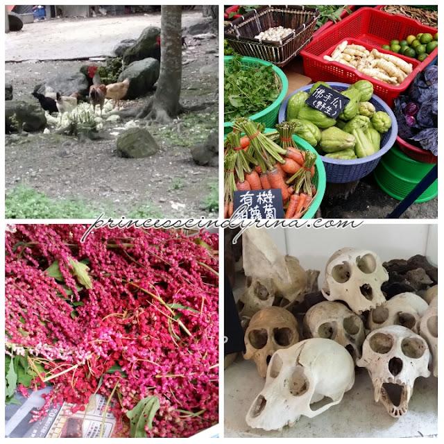 market and skulls