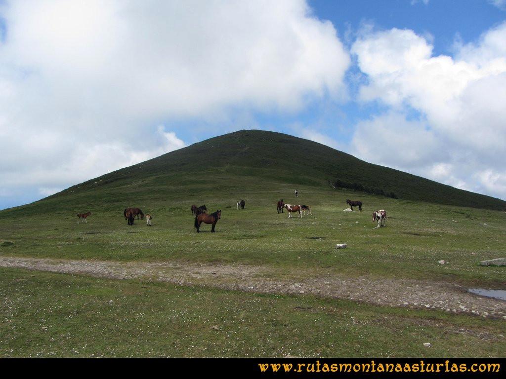 Ruta Llan de Cubel y Cueto: Último tramo a la cima del Llan de Cubel