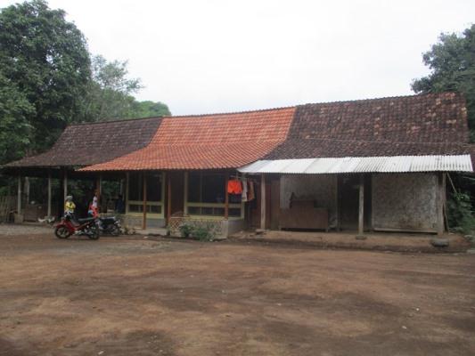 Mengulik Suku Osing Banyuwangi