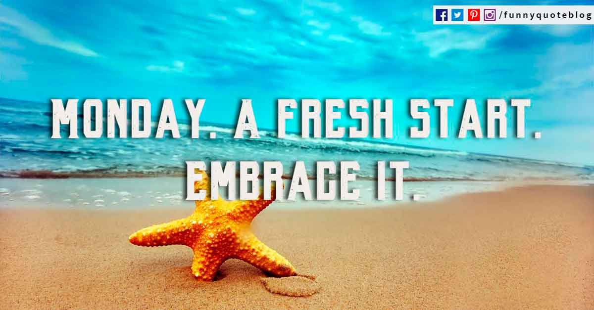 Monday. A fresh start. Embrace it.