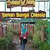 Taman Bunga Celosia bandungan rasa luar negeri