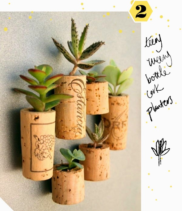 DIY Mini Succulent Gardens - in old bottle corks!
