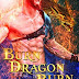 Book Reviewed: Burn Dragon Burn: Lick of Fire (Dragon Guard Series Book 34)  My Rating: 5 Stars  Author: Julia Mills   @JuliaMills623