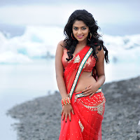 Amala paul in various saree