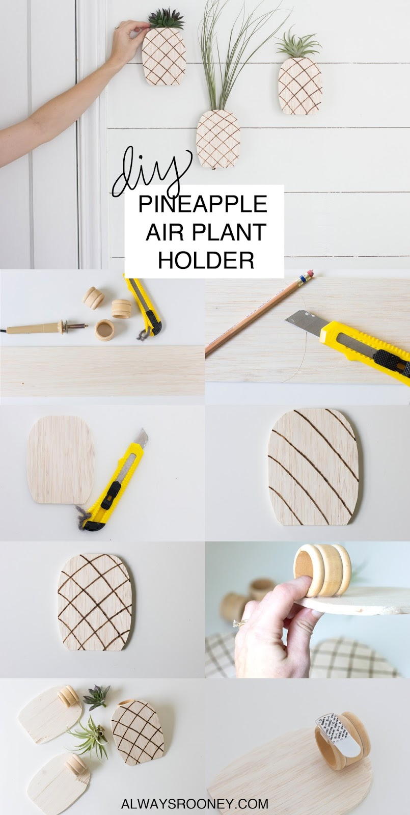 always rooney: Pineapple Air Plant Holder | DIY