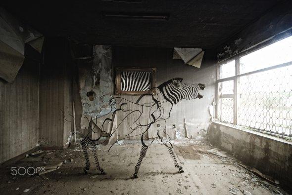 Ozkan Durakoglu darkology 500px fotografia photoshop foto-manipulação surreal sombria sonhos