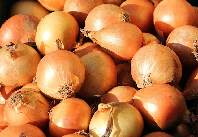 Properties of Onion in hindi