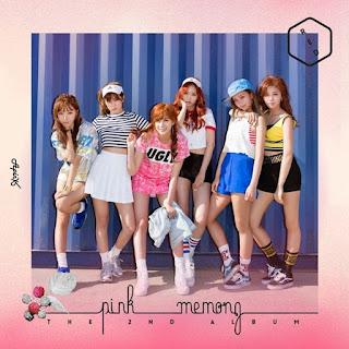 Apink – Pink Memory Albümü