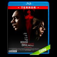 When The Bough Breaks (2016) BRRip 720p Audio Ingles 5.1 Subtitulada