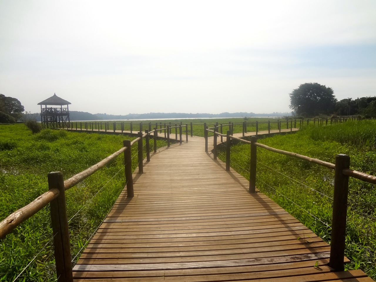 Parque Linear Castelo