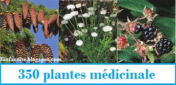 http://biofaculte.blogspot.com/2015/03/350-plantes-medicinales-les-plus-utiles.html
