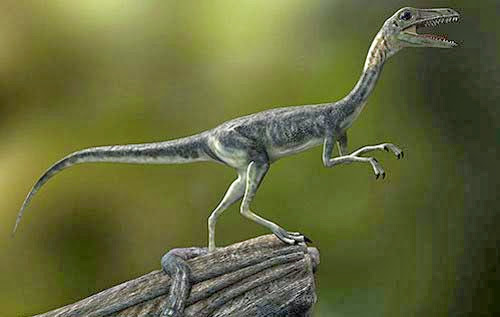 Making of Compsognathus