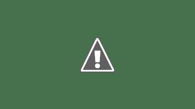 志志乃村神社-外観