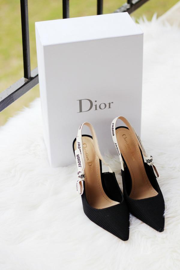 bc877fe7a264 Dream Shoes  Dior J Adior Slingback Pumps Review
