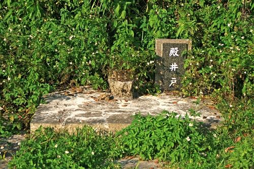 フサトモー(金満の杜) 殿井戸の写真