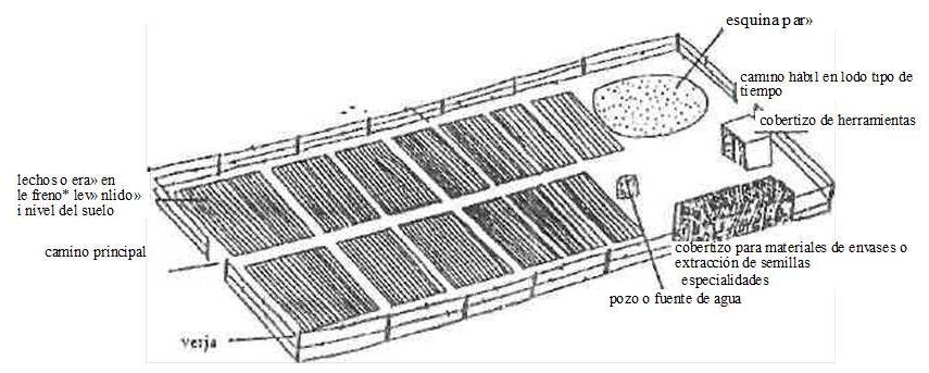 Construccion de viveros ubicaci n del vivero for Que es un vivero escolar