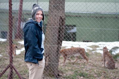 Targu Mures Zoo, Romania