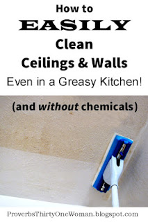 http://proverbsthirtyonewoman.blogspot.com/2014/09/how-to-easily-clean-ceilings-walls-even.html#.WTmxgty1sdh