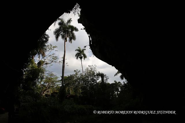 concurso nacional de fotografía de naturaleza CubaFlash 2016, realizado en la Base de Campismo Cueva de los Portales, ubicada en el territorio protegido Mil cumbres en La Palma, Pinar del Río, Cuba.