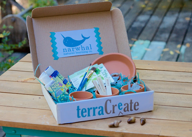 Terra Crate, narwhal natural