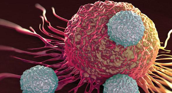 Mesti Coba, Cara Menghilangkan Racun Dalam Tubuh Dengan Mudah