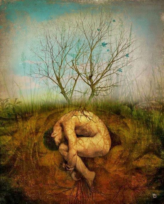 Cresço entre ervas e chão doce