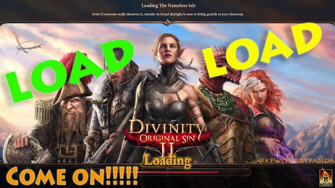 Divinity Original Sin II : I had sex with LIZARD PROSTITUTE and with a FLESH EATING ELF!